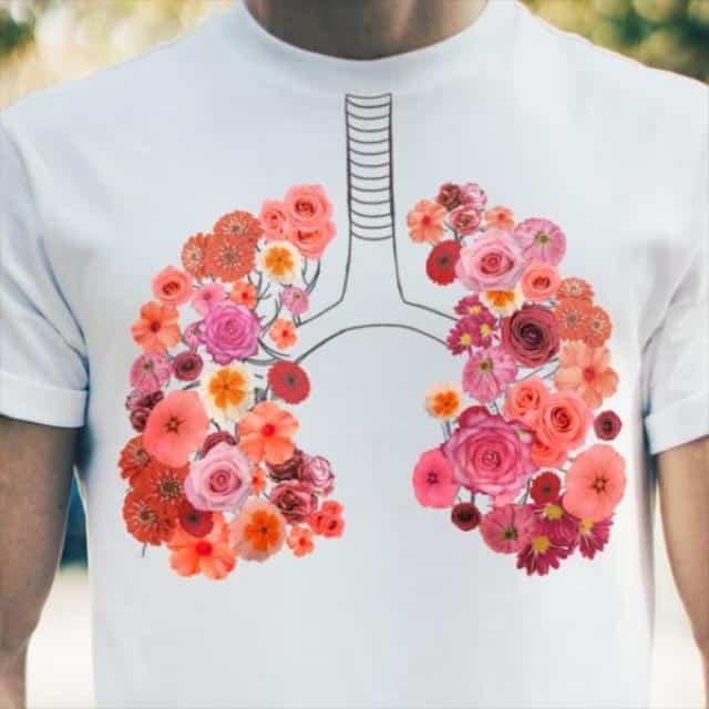 ریه سالم بعد از ترک سیگار و رهایی از عوارض آن
